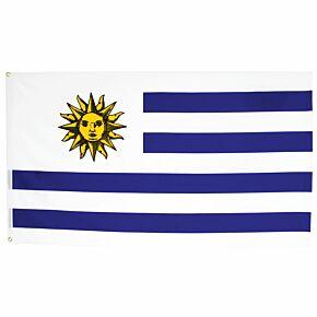 Uruguay Large Flag