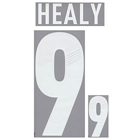 Healy 9 - 12-13 Northern Ireland Home Official Name & Number