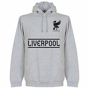 Liverpool KIDS Team Hoodie - Grey