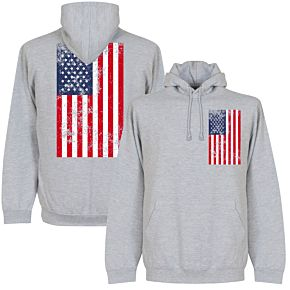 USA Graphic Hoodie - Grey