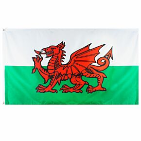 Wales Large National Flag (90x150cm approx)