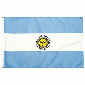 Argentina Large Flag