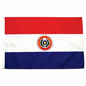 Paraguay Large Flag