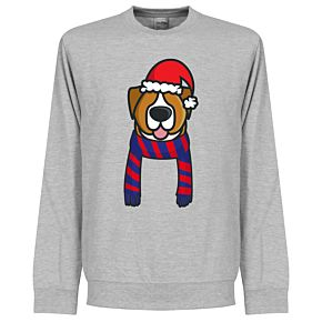 Christmas Dog Supporter KIDS Sweatshirt - (Grey/Blue/Red)
