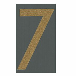 7 (Official Shorts Number)