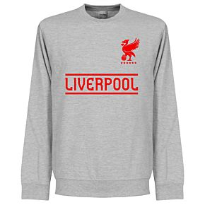 Liverpool Team Sweatshirt  - Grey