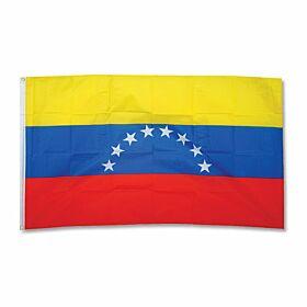 Venezuela Large Flag