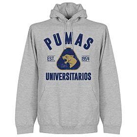 Pumas Established Hoodie - Grey Marble
