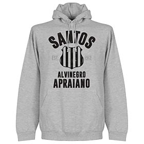 Santos Established Hoodie - Grey