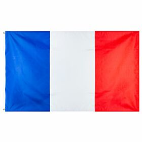 France Large National Flag (90x150cm approx)